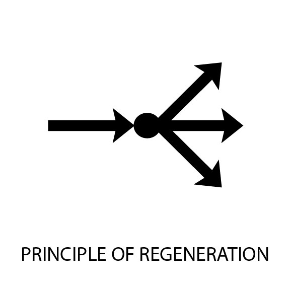 Principle of Regeneration